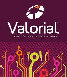 Logo pole Valorial