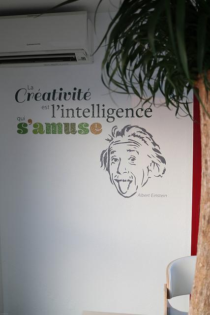 La créativité est l'intelligence qui s'amuse